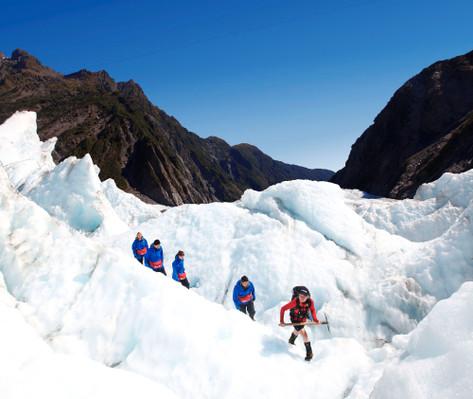 franz josef glacier group