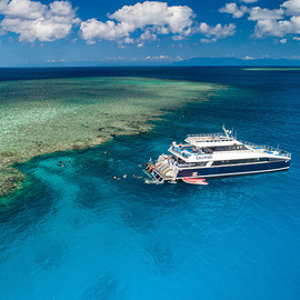 Outer Great Barrier Reef Snorkel Tour From Port Douglas