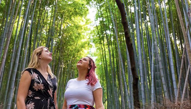 13 Day Japan Adventure - Tokyo to Kyoto
