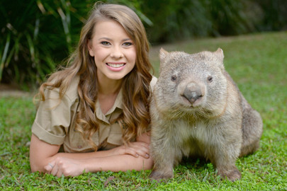 Australia Zoo Transfer & Entry