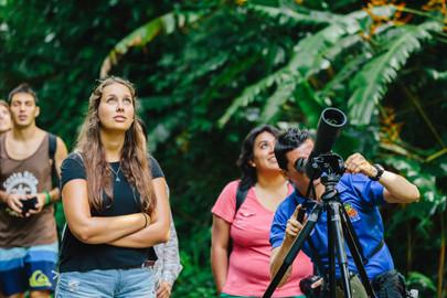 Carara National Park Tour
