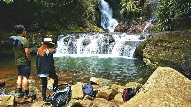 Lamington National Park Waterfall