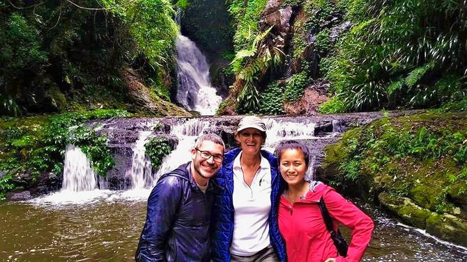Lamington National Park Waterfalls