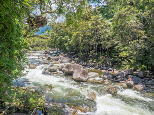 Mossman Gorge Adventure Day with River Drift Snorkelling Deals