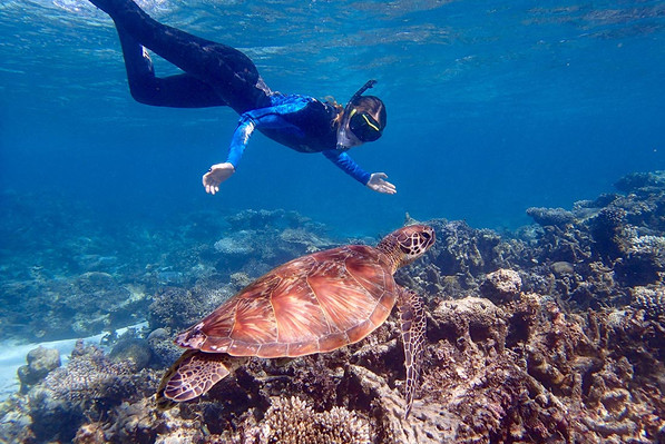 8 day ningaloo reef and pilbara adventure