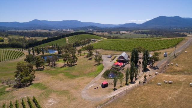 Melbourne wine tour deals