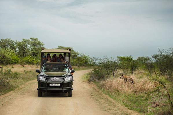 African safari tour deal