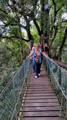 Lamington National Park Day Trip Special