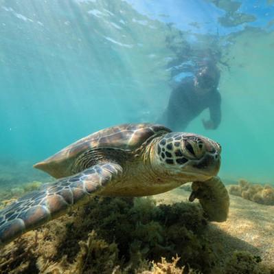 Los Isles Snorkel Tour