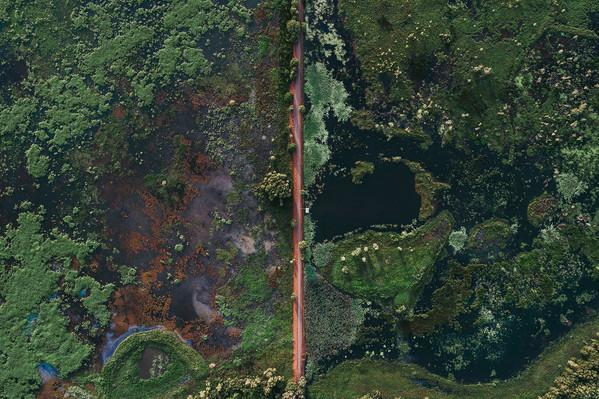 Fogg Dam Conservation Reserve Tourism NT-Jarrad Seng 126577-56.jpg