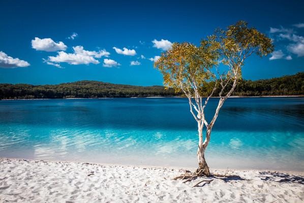 australia-lake-mckenzie-boorangoora.jpg