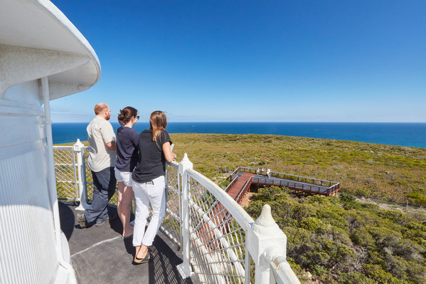 Cape Naturaliste Lighthouse Whales