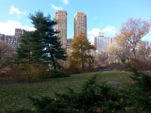 Central Park TV & Movie Sites Deals