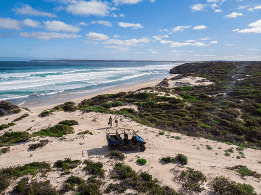 Surf & Sand Buggy Adventure (2 hours) tour