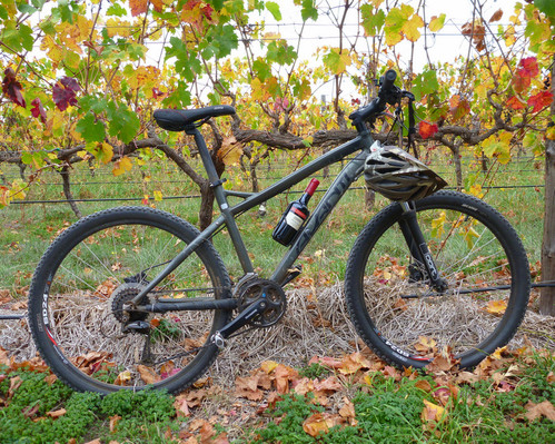 Hills, Vines and Wines by mountain bike adventure