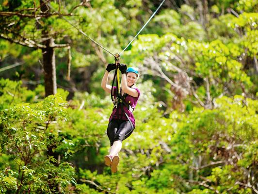 Canyon Flyer Mount Tambourine Deals