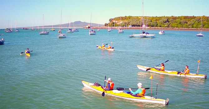rangitoto island kayak promotion
