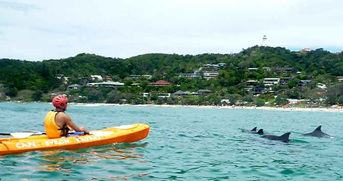 see byron bay dolphins