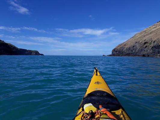 potahu penguins kayak