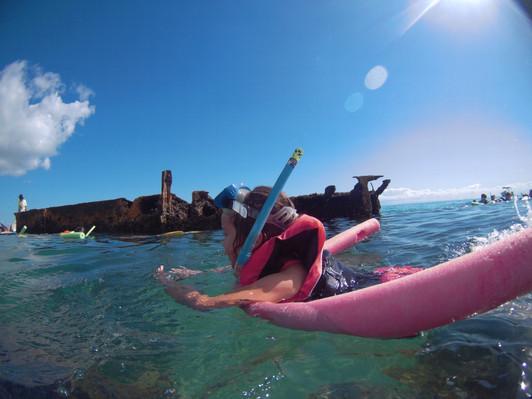 Tangalooma Wrecks Snorkelling Cruise