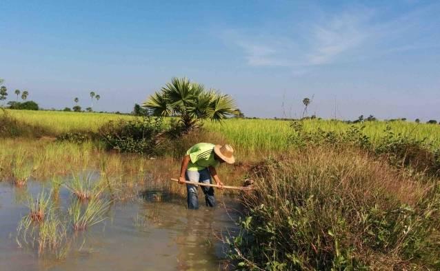 Cambodia countryside tour reviews