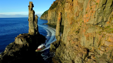 3 Hour Wilderness Cruise From Bruny Island