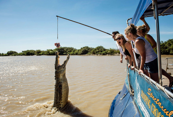 Adelaide River Jumping Crocodile Cruise Tourism NT-Shaana McNaught 125868-56.jpg