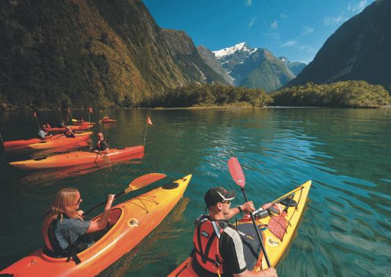 Milford Sound Cruise Kayak