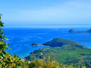 Wilsons Promontory Full Day Tour