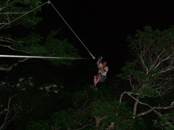 Night Canopy Tour and Superman Zip Line from Puntarenas