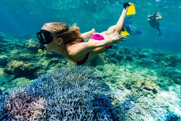 snorkel fiji islands