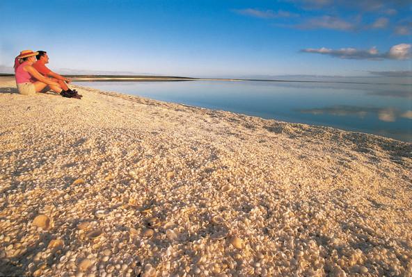 Shell Beach, south east of Denham, Shark Bay, Tourism WA, 104486-2.jpg