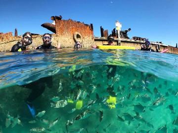 1 Day Moreton Island Snorkel-Sandboard Adventure Tour
