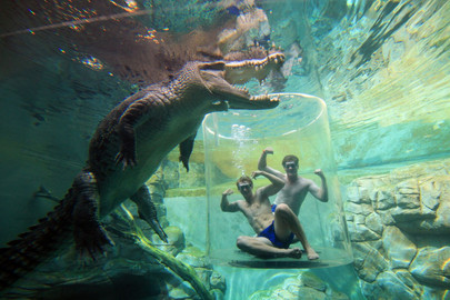 Crocosaurus Cove Entry & Cage of Death (x2 persons)