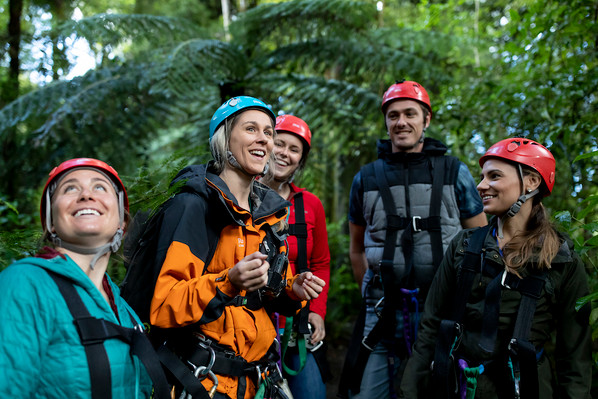 eco-friendy tour rotorua