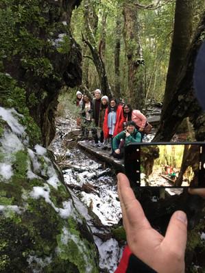 tassie cradle mountain tour