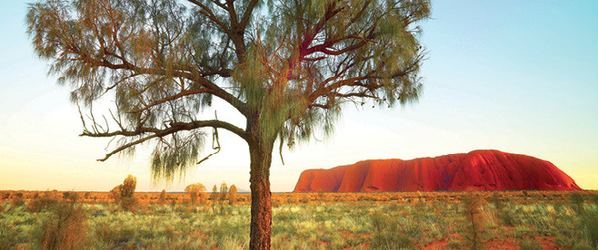 Uluru–Kata Tjuta National Park tours