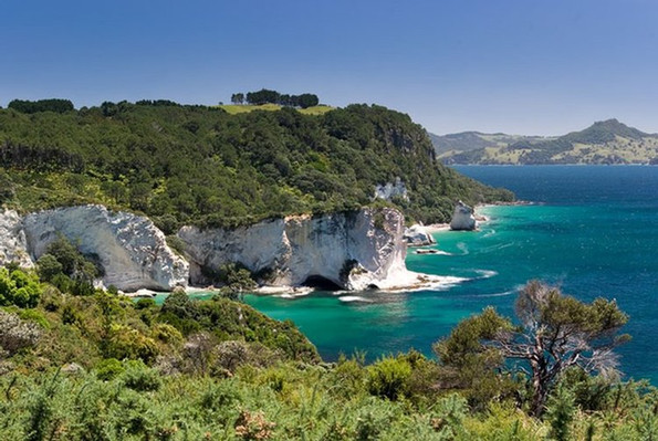 tour cathedral bay