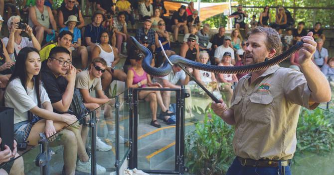 Great Australian Wildlife Experience package