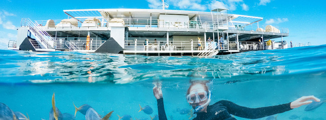 CWS-REEFWORLD-woman-snorkelling-with-fish-pontoon-in-background_1920.jpeg