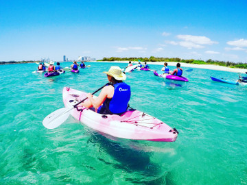Dolphin and Stradbroke Island Kayaking Tour