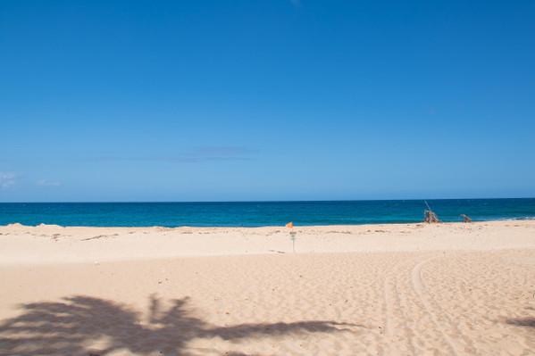 Oahu Sightseeing & Snorkel Tour
