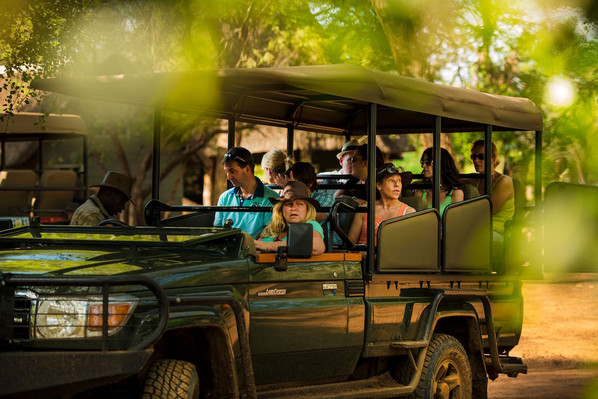 Guided safari tour South Africa