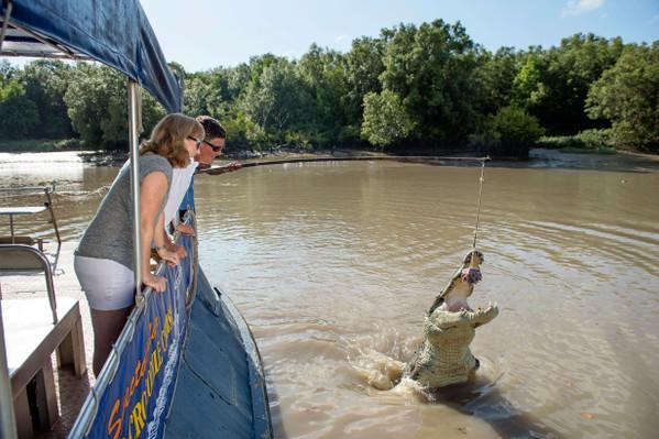 Jumping Crocodile Cruise Adelaide River Tourism NT-Shaana McNaught 125873-56.jpg
