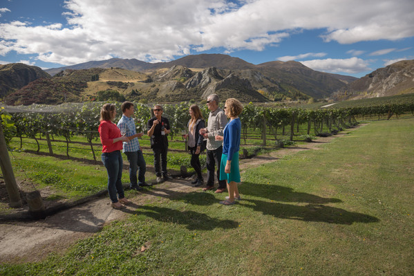 new zealand wine tour