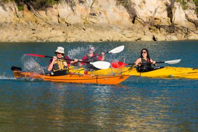 Southern Blend Kayak and Walk