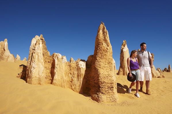 The Pinnacles, Nambung National Park, Cervantes, Tourism WA 106572-56.jpg