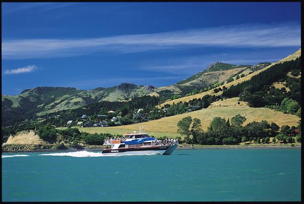 landscape akaroa nature cruise