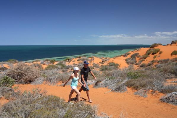 Cape Peron, Francois Peron National Park, Denham, Australias Coral Coast, 106942.jpg