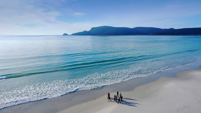 Bruny Island Full Day Tour